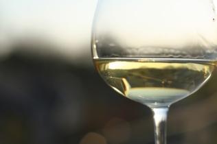 copa-vino-blanco
